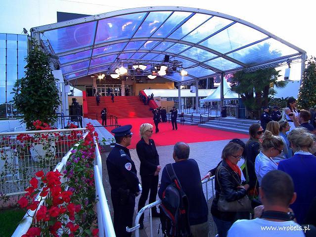 Cannes Festiwal