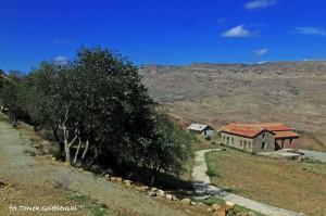 Okolica skalnego miasta Dawit Garedża