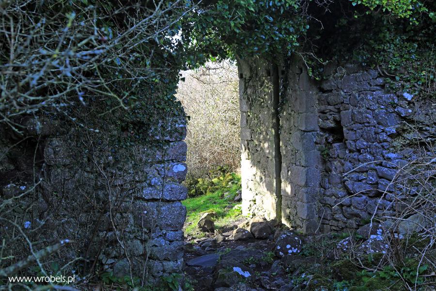 Obecnie główna brama do zamku