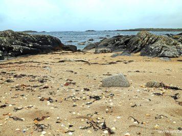 Gurteen Beach 12