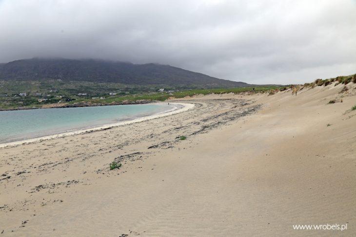 Gurteen Beach 13