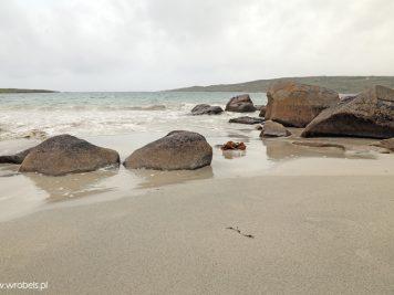 Gurteen Beach 14