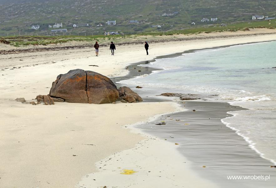 Gurteen Beach 8