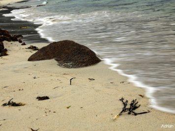 Gurteen-Beach.jpgA